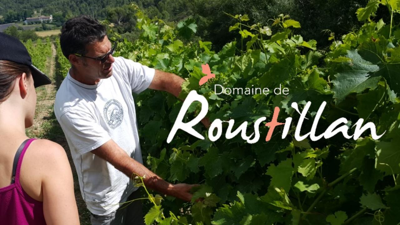 Domaine de Roustillan